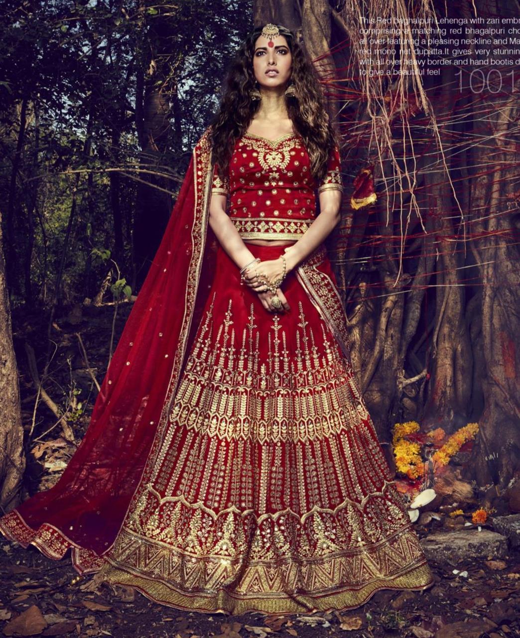 Embroidered Bhagalpuri Silk RED Long choli Lehenga Choli Ghagra