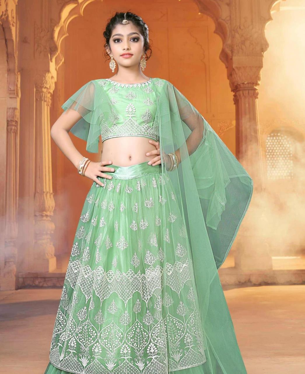 Embroidered Net Lehenga in Celadon