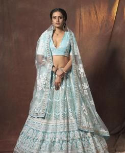 Resham Net Lehenga in Baby Blue