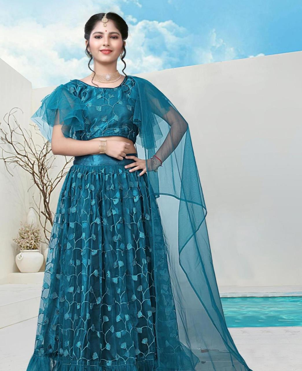 Embroidered Net Lehenga in Sky