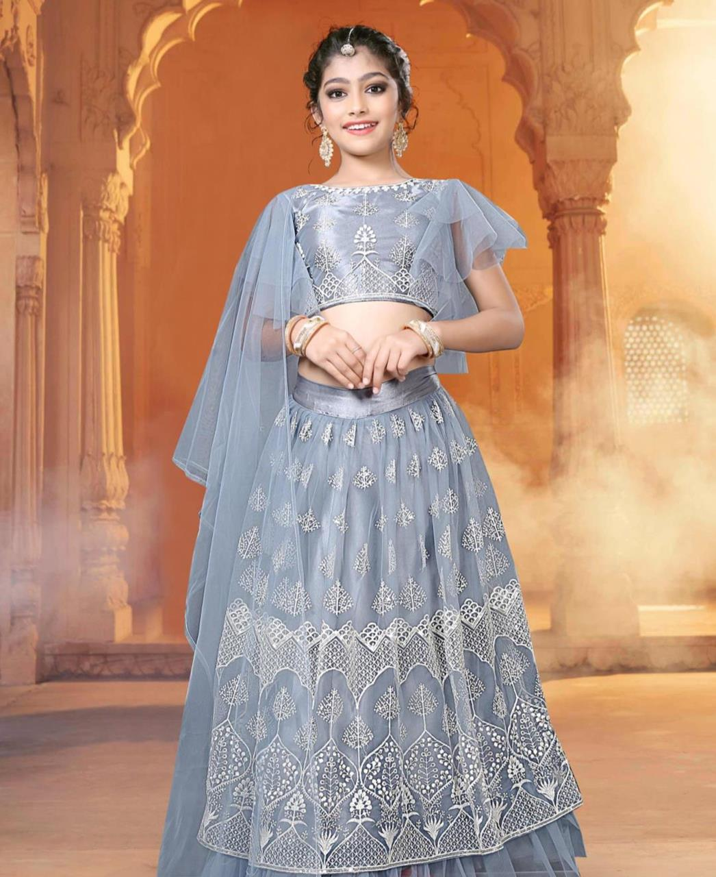 Embroidered Net Lehenga in Light Greay