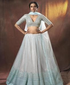 Resham Net Lehenga in Light Blue