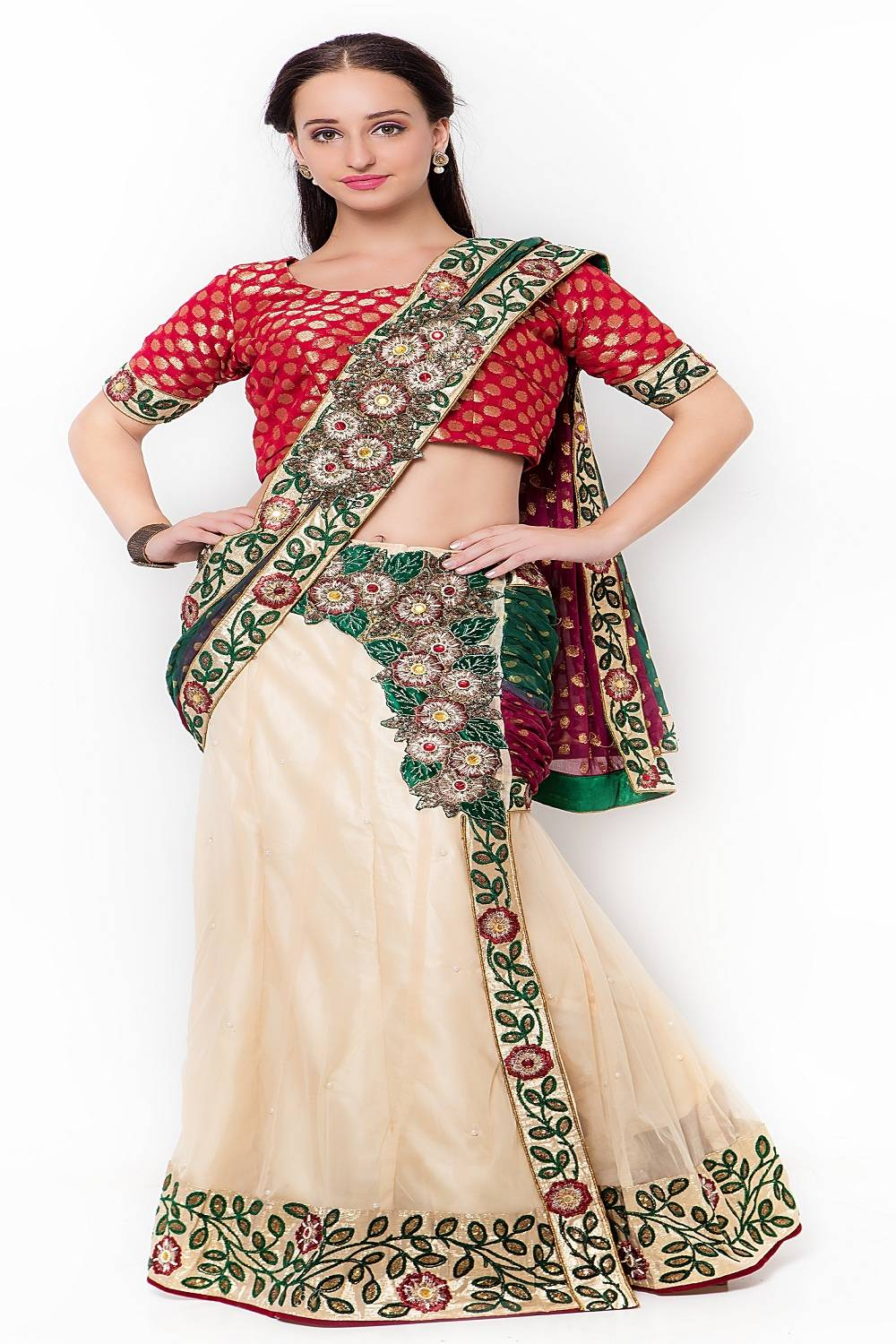 Embroidered Net Saree (Sari) in Beige