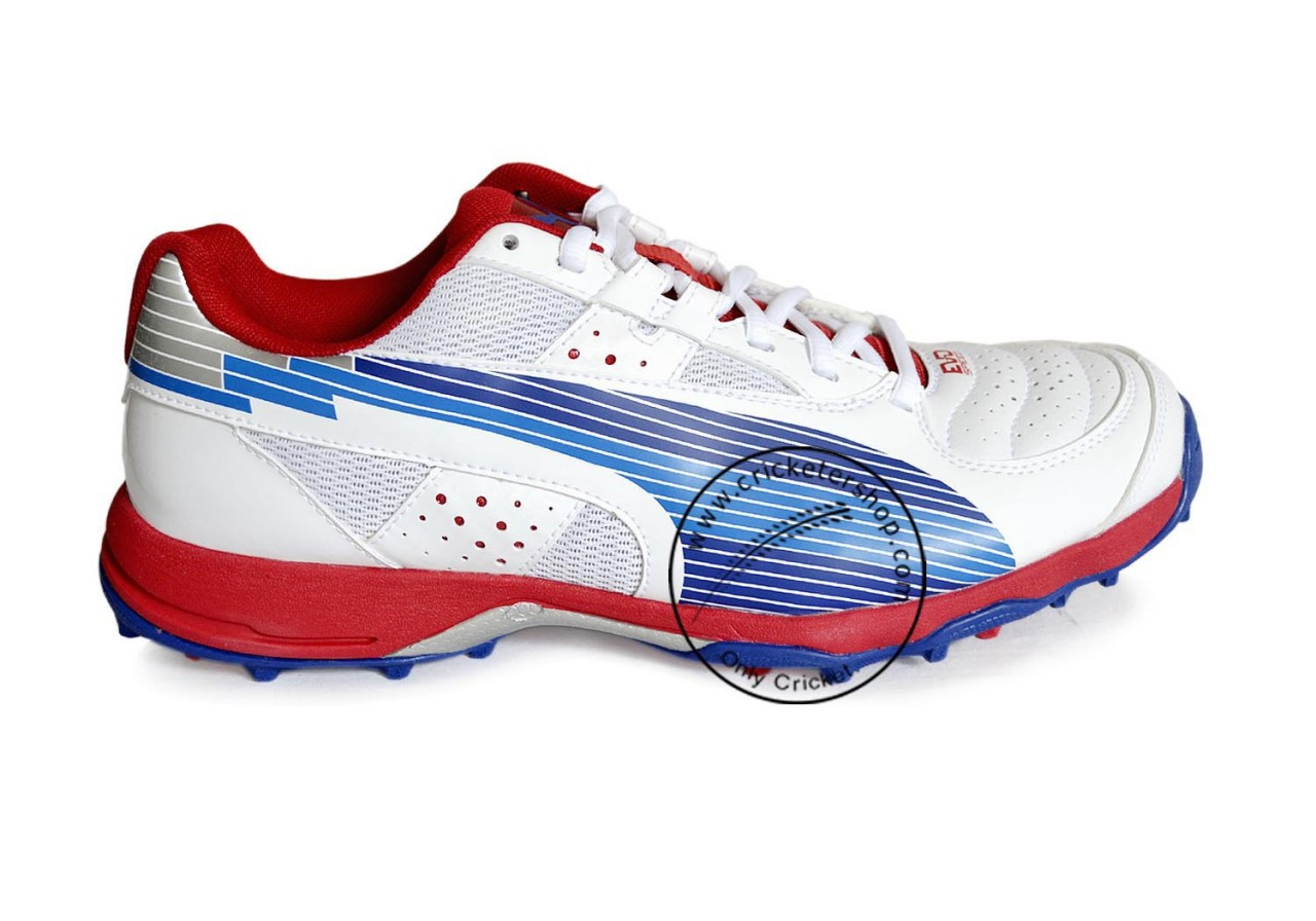 Puma Evo Speed Cricket Shoes b149213bc